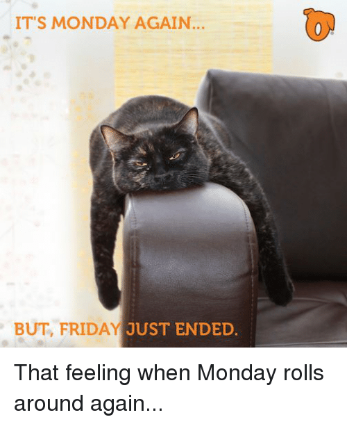 Friday, Memes, and Monday: IT'S MONDAY AGAIN...  BUT, FRIDAY JUST ENDED That feeling when Monday rolls around again...
