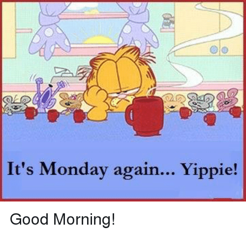 Dank, Mondays, and Good Morning: It's Monday again... Yippie! Good Morning!
