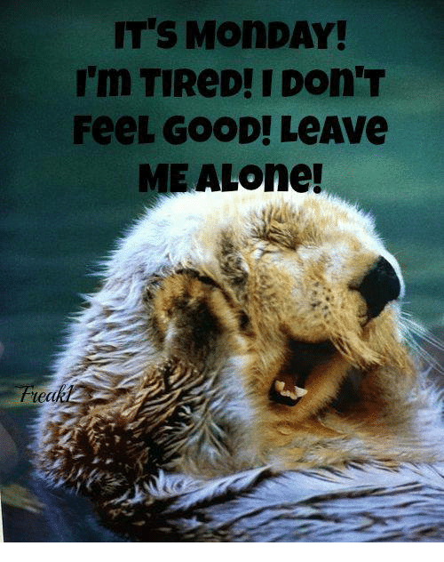 Memes, Mondays, and Good: ITS MONDAY!  I'm TIReD! I Don'T  FeeL GOOD! LeAve  MEAL one!