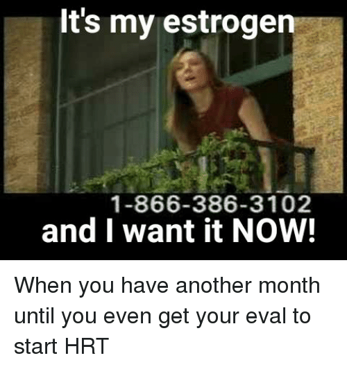 It's My Estrogen 1-866-386-3102 and I Want It NOW! | Another Meme on