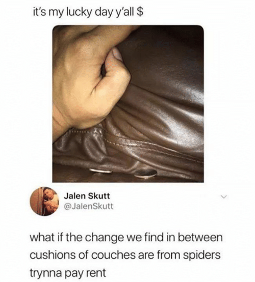 Memes, Spiders, and Change: it's my lucky day y'all $  Jalen Skutt  @JalenSkutt  what if the change we find in between  cushions of couches are from spiders  trynna pay rent