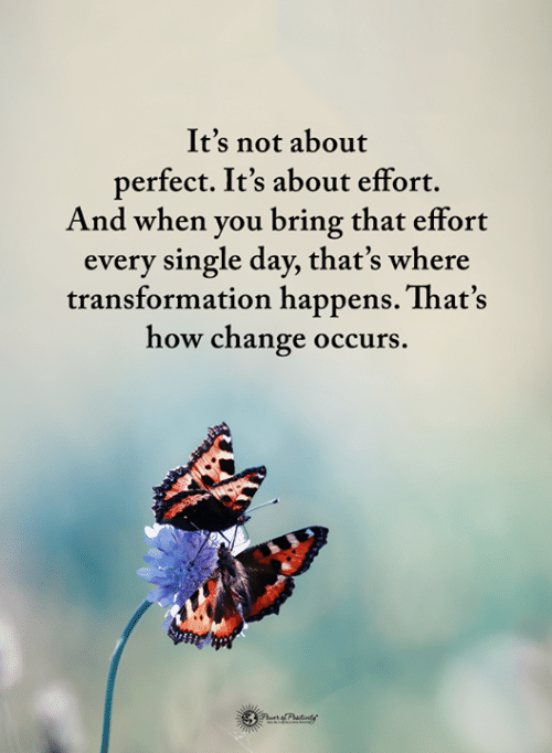 Memes, Change, and Single: It's not about  perfect. It's about effort.  And when you bring that effort  every single day, that's where  transformation happens. That's  how change occurs.