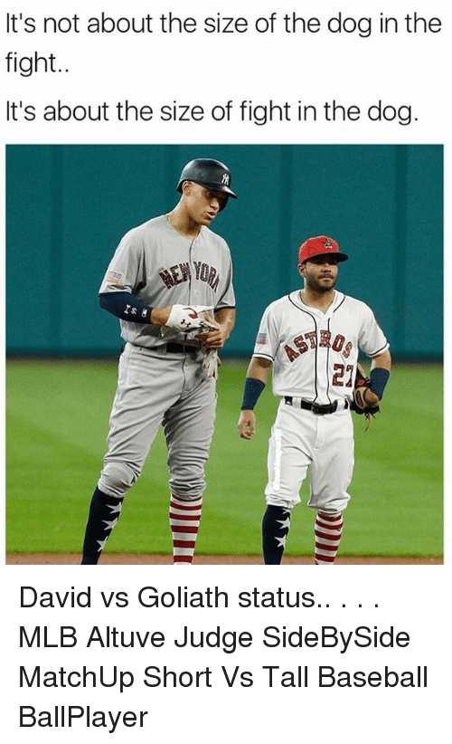 its not about the size of the dog in the 24640646 ✅ 25 best memes about altuve altuve memes