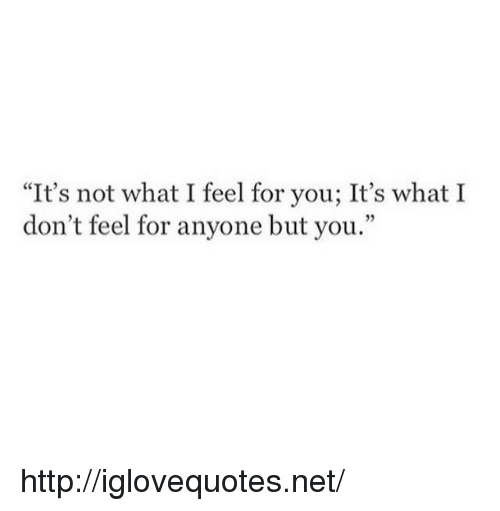 """Http, Net, and You: """"It's not what I feel for you; It's what I  don't feel for anyone but you.  95 http://iglovequotes.net/"""