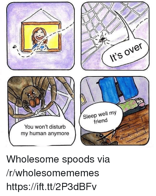 Wholesome, Sleep, and Human: It's over  You won't disturb  my human anymore  Sleep well my  friend Wholesome spoods via /r/wholesomememes https://ift.tt/2P3dBFv