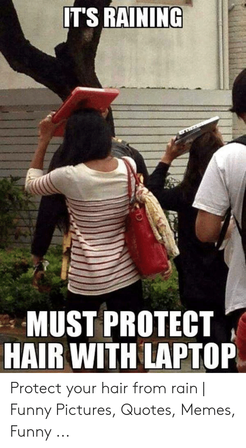 IT\'S RAINING MUST PROTECT HAIR WITH LAPTOP Protect Your Hair ...
