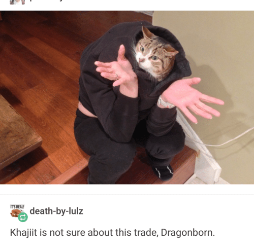 Death, Dragonborn, and Real: IT'S REAL  death-by-lulz  Khajiit is not sure about this trade, Dragonborn.