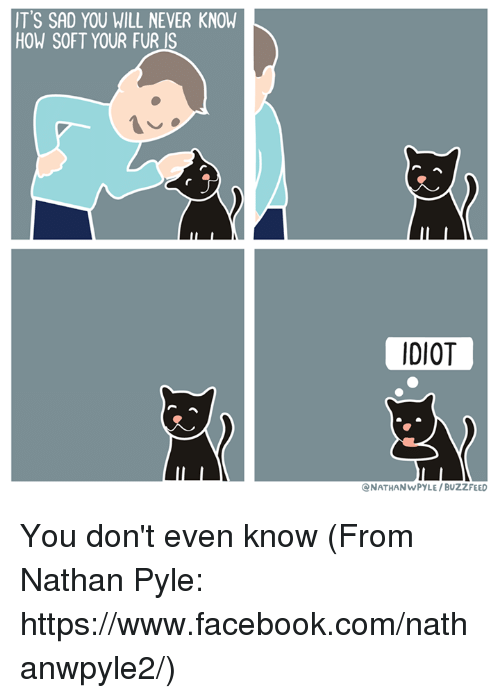 Memes, Buzzfeed, and 🤖: IT'S SAD YOU WILL NEVER KNOW  HOW SOFT YOUR FUR IS  IDIOT  NATHANWPYLE /BUZZFEED You don't even know (From Nathan Pyle: https://www.facebook.com/nathanwpyle2/)