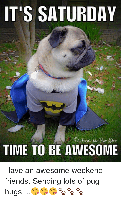 Friends, Memes, and Time: IT'S SATURDAY  OArckie the Pug Stor  TIME TO BE AWESOME Have an awesome weekend friends. Sending lots of pug hugs....😘😘😘🐾🐾🐾