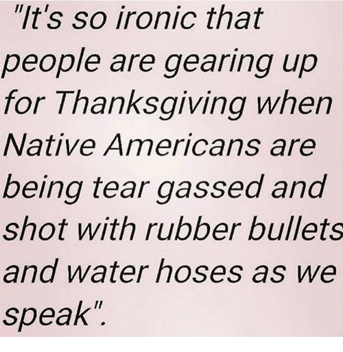 """Memes, 🤖, and Iron: """"It's so ironic that  people are gearing up  for Thanksgiving when  Native Americans are  being tear gassed and  shot with rubber bullets  and water hoses as we  speak"""