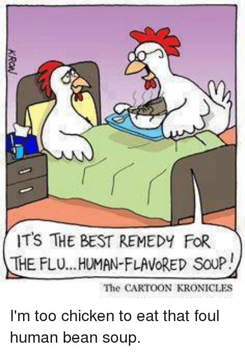 Its The Best Remedy For The Fluan Favored Soup The Cartoon Kronicles