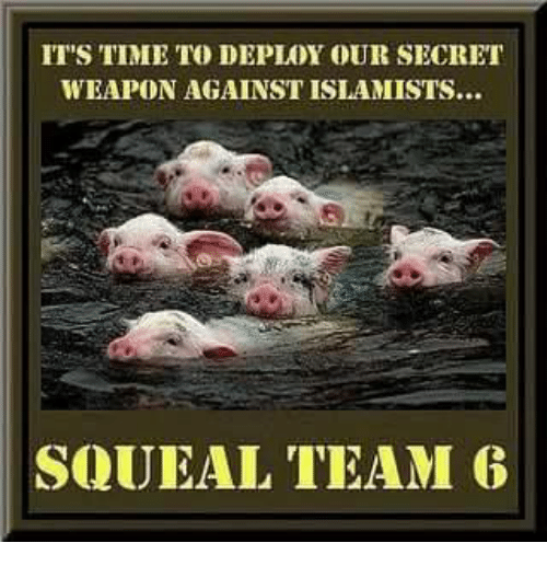 Dank, Time, and 🤖: IT'S TIME TO DEPLOY OUR SECRET  WEAPON AGAINST ISLAMISTS...  SQUEAL TEAM 6