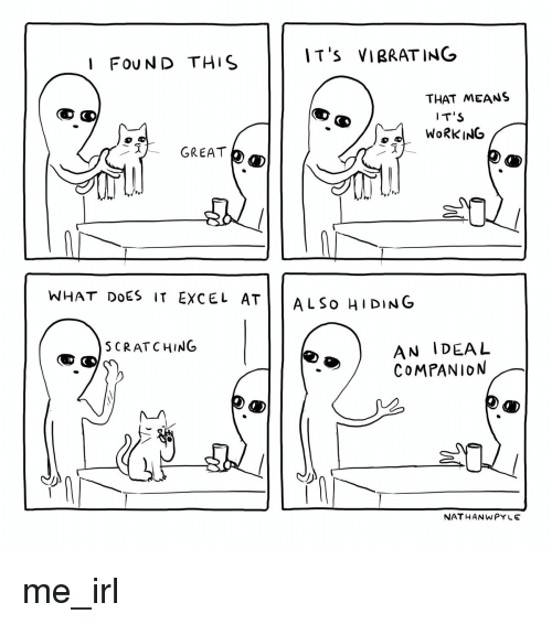 Excel, What Does, and Irl: IT'S VIBRATING  I FOUND THIS  THAT MEANS  IT S  WORKING  GREAT  WHAT DOES IT EXCEL ATİİ ALSO HIDING  AN IDEAL  COMPANION  SCRATCHING  NAT HANWPYLE me_irl
