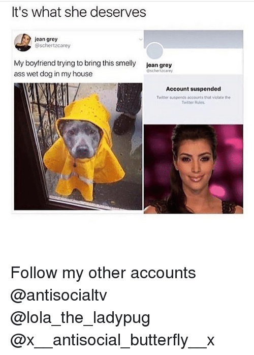 Memes, My House, and Twitter: It's what she deserves  jcan grey  @schertzcarey  My boyfriend trying to bring this smelly  ass wet dog in my house  jean grey  schertzcarey  Account suspended  Twitter suspends accounts that viotate the  Twitter Rules Follow my other accounts @antisocialtv @lola_the_ladypug @x__antisocial_butterfly__x