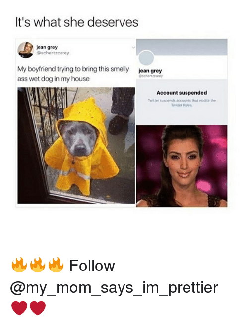 Ass, Memes, and My House: It's what she deserves  jean grey  @schertzcarey  My boyfriend trying to bring this smelly  ass wet dog in my house  jean grey  Account suspended  Twitter suspends accounts that violate the  Witter Rues 🔥🔥🔥 Follow @my_mom_says_im_prettier ❤️❤️