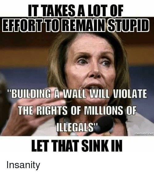 """Insanity, Will, and Violate: ITTAKES A LOT OF  EFFORTTOREMAINSTUPID  BUILDINGA WALL WILL VIOLATE  THE RIGHTS OF MILLIONS O  ILLEGALS""""  LET THAT SINKIN Insanity"""