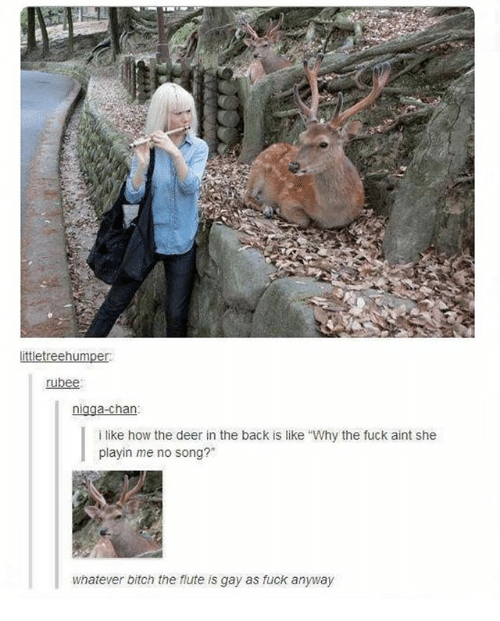 """Bitch, Deer, and Ironic: ittletreehumper  rubee:  nigga-chan  i like how the deer in the back is like """"Why the fuck aint she  playin me no song?""""  whatever bitch the flute is gay as fuck anyway"""