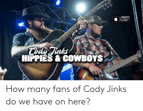 Dallas Cowboys, Memes, and iTunes: iTunes  nks  HIPPIES & COWBOYS How many fans of Cody Jinks do we have on here?