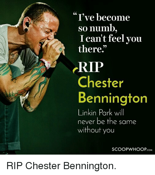 "Memes, Never, and 🤖: ""I've become  so numb  I can't feel you  there.""  RIP  Chester  Bennington  Linkin Park will  nkin Fark wI  never be the same  without you  SCOOPWHOOP.COM RIP Chester Bennington."