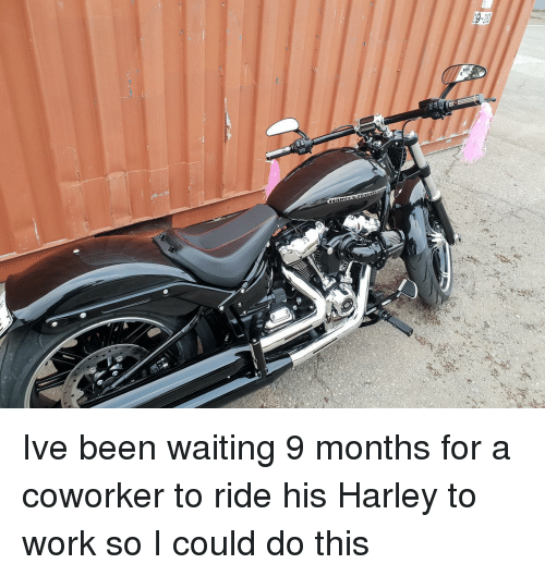 Work, Waiting..., and Been: Ive been waiting 9 months for a coworker to ride his Harley to work so I could do this
