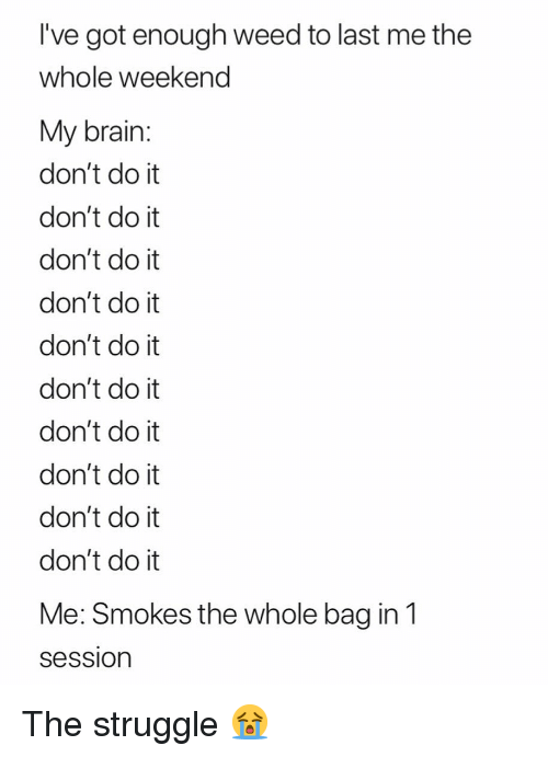Struggle, Weed, and Brain: I've got enough weed to last me the  whole weekend  My brain:  don't do it  don't do it  don't do it  don't do it  don't do it  don't do it  don't do it  don't do it  don't do it  don't do it  Me: Smokes the whole bag in1  Session The struggle 😭