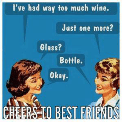Image result for best friends wine meme