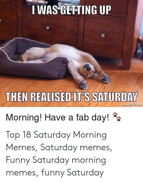 Funny, Memes, and Top: IWAS GETTING UP  THEN REALISED IT'S SATURDAY  Morning! Have a fab day! Top 18 Saturday Morning Memes, Saturday memes, Funny Saturday morning memes, funny Saturday