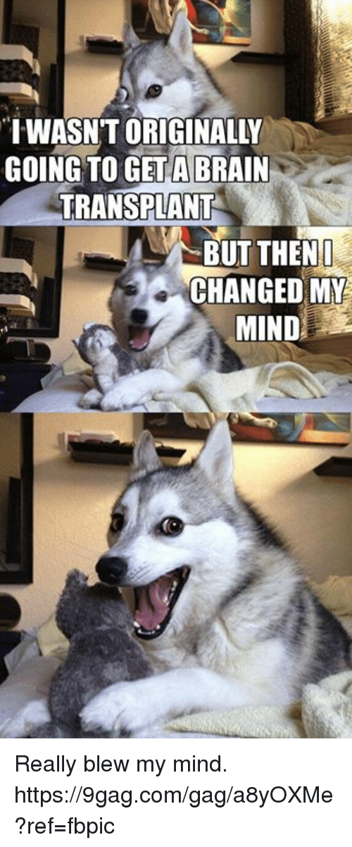 """9gag, Dank, and Brain: """"IWASNT ORIGINALLY  GOING TO GET A BRAIN  TRANSPLANT  BUT THEN I  CHANGED MY  MIND Really blew my mind. https://9gag.com/gag/a8yOXMe?ref=fbpic"""