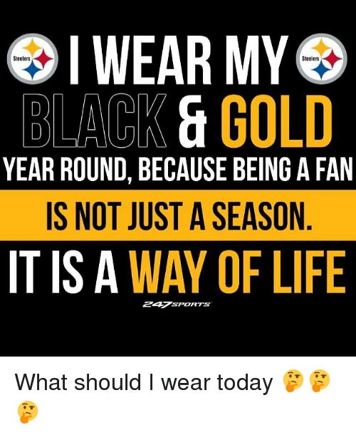 Life, Memes, and Black: IWEAR MY  Steelers  Steelers  BLACK &GOLD  YEAR ROUND, BECAUSE BEING A FAN  IS NOT JUST A SEASON  IT IS A WAY OF LIFE  247SPORTS What should I wear today 🤔🤔🤔