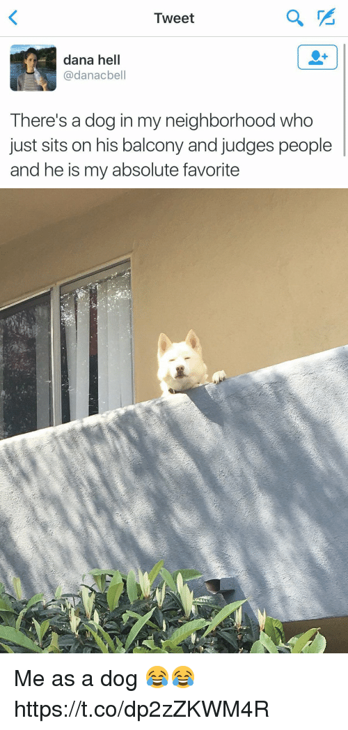 Relatable, Hell, and Dog: Iweet  dana hell  @danacbell  There's a dog in my neighborhood who  just sits on his balcony and judges people  and he is my absolute favorite Me as a dog 😂😂 https://t.co/dp2zZKWM4R