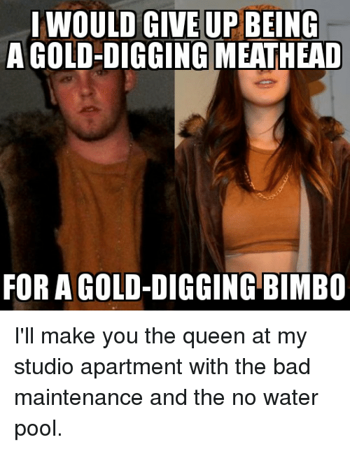 Bad, Reddit, and Queen: IWOULD GIVE UP BEING  A GOLD-DIGGING MEATHEAD  FOR A GOLD-DIGGING BIMBO