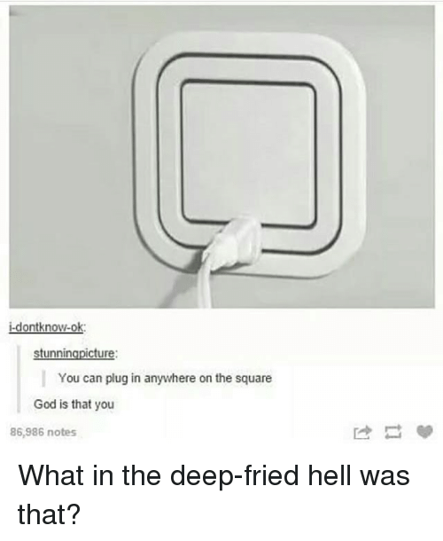 God, Memes, and Square: j-dontknow-ok  stunningpicture  You can plug in anywhere on the square  God is that you  86,986 notes What in the deep-fried hell was that?