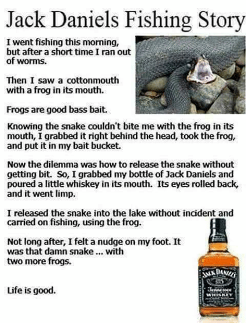 Memes, Snake, and Snakes: Jack Daniels Fishing Story  I went fishing this morning,  but after a short time I ran out  of worms.  Then I saw a cottonmouth  with a frog in its mouth.  Frogs are good bass bait.  Knowing the snake couldn't bite me with the frog in its  mouth, I grabbed it right behind the head, took the frog,  and put it in my bait bucket.  Now the dilemma was how to release the snake without  getting bit. So, I grabbed my bottle of Jack Daniels and  poured a little whiskey in its mouth. Its eyes rolled back,  and it went limp.  I released the snake into the lake without incident and  carried on fishing, using the frog.  Not long after, I feltanudge on my foot. It  was that damn snake  with  two more frogs.  Life is good.