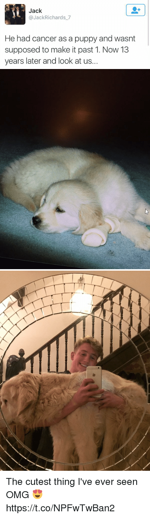 Omg, Cancer, and Puppy: Jack  @JackRichards_7  He had cancer as a puppy and wasnt  supposed to make it past 1. Now 13  years later and look at us. The cutest thing I've ever seen OMG 😍 https://t.co/NPFwTwBan2