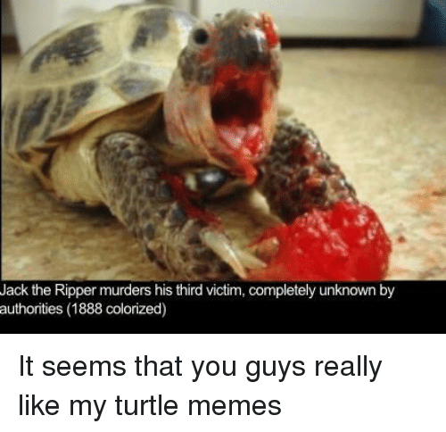 Memes, Turtle, and Jack the Ripper: Jack the Ripper murders his third victim, completely unknown by  authorities (1888 colorized) It seems that you guys really like my turtle memes