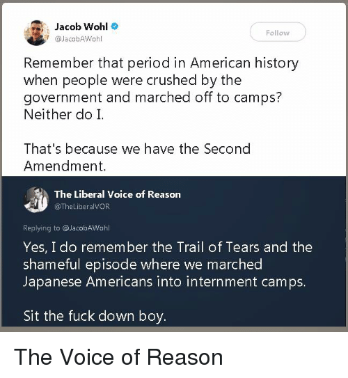 Period, The Voice, and American: Jacob Wohl  @JacobAWohl  Follow  Remember that period in American history  when people were crushed by the  government and marched off to camps?  Neither do I.  That's because we have the Second  Amendment.  The Liberal Voice of Reason  TheLiberalVOR  Replying to @JacobAWohl  Yes, I do remember the Trail of Tears and the  shameful episode where we marched  Japanese Americans into internment camps.  Sit the fuck down boy. The Voice of Reason