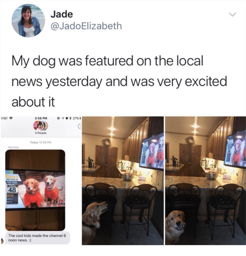 Jade My Dog Was Featured on the Local News Yesterday and Was