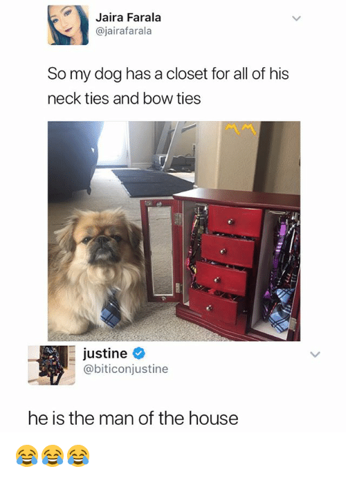 House, Dank Memes, and Dog: Jaira Farala  @jairafarala  So my dog has a closet for all of his  neck ties and bow ties  -Justine e  @biticonjustine  he is the man of the house 😂😂😂