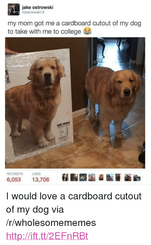 "College, Love, and Http: jake ostrowski  @jostrowski12  my mom got me a cardboard cutout of my dog  to take with me to college  INT  RETWEETS  LIKES  6,053 13,706 <p>I would love a cardboard cutout of my dog via /r/wholesomememes <a href=""http://ift.tt/2EFnRBt"">http://ift.tt/2EFnRBt</a></p>"