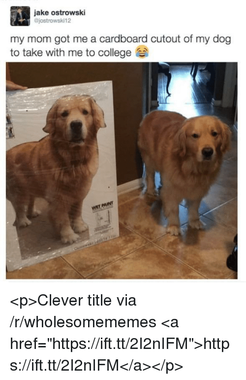 "College, Mom, and Got: jake ostrowski  jostrowski12  my mom got me a cardboard cutout of my dog  to take with me to college <p>Clever title via /r/wholesomememes <a href=""https://ift.tt/2I2nIFM"">https://ift.tt/2I2nIFM</a></p>"
