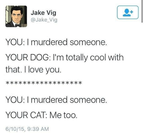Dank, Love, and I Love You: Jake Vig  @Jake Vig  YOU: I murdered someone.  YOUR DOG: I'm totally cool with  that. I love you.  YOU: I murdered someone.  YOUR CAT: Me too.  6/10/15, 9:39 AM