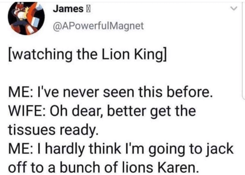 Memes, Lion, and Lions: James  @APowerfulMagnet  [watching the Lion Kingl  ME: I've never seen this before.  WIFE: Oh dear, better get the  tissues ready.  ME: I hardly think I'm going to jack  off to a bunch of lions Karen.