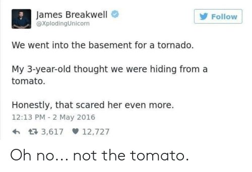 James Breakwell Follow We Went Into the Basement for a Tornado My 3