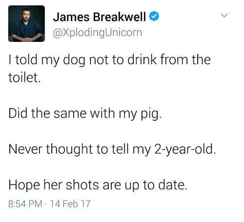 James Breakwell I Told My Dog Not to Drink From the Toilet