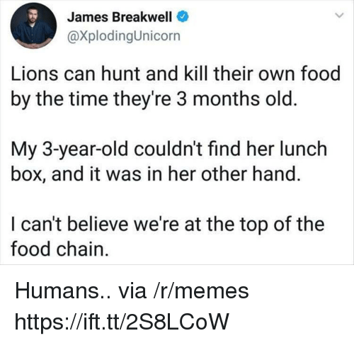 Food, Memes, and Lions: James Breakwell  @XplodingUnicorn  Lions can hunt and kill their own food  by the time they're 3 months old.  My 3-year-old couldn't find her lunch  box, and it was in her other hand.  I can't believe we're at the top of the  food chain Humans.. via /r/memes https://ift.tt/2S8LCoW