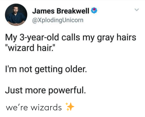 """Hair, Wizards, and Old: James Breakwell  @XplodingUnicorn  My 3-year-old calls my gray hairs  """"wizard hair.""""  I'm not getting older.  Just more powerful we're wizards ✨"""