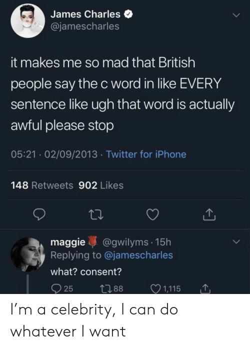 James Charles It Makes Me So Mad That British People Say The C