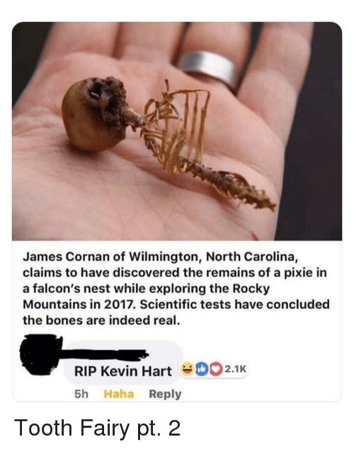Bones, Rocky, and Falcons: James Cornan of Wilmington, North Carolina,  claims to have discovered the remains of a pixie in  a falcon's nest while exploring the Rocky  Mountains in 2017. Scientific tests have concluded  the bones are indeed real  RIP Kevin HartD2.1K  5h Haha Reply Tooth Fairy pt. 2
