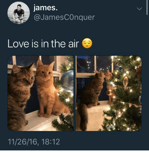 Love, Memes, and 🤖: james.  @JamesCOnquer  Love is in the air  11/26/16, 18:12
