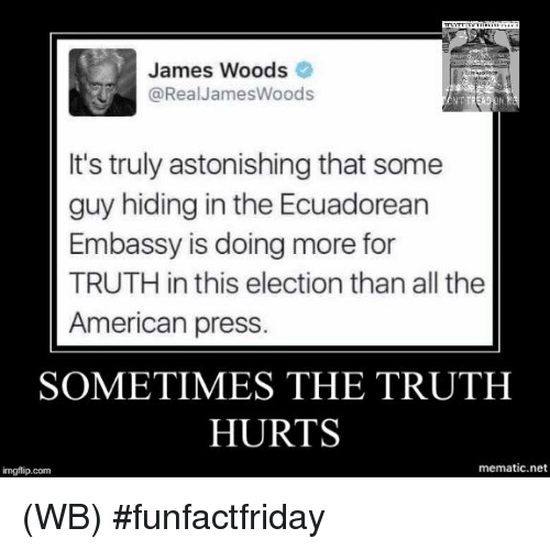 Memes, American, and Astonishing: James Woods  @Real James Woods  It's truly astonishing that some  guy hiding in the Ecuadorean  Embassy is doing more for  TRUTH in this election than all the  American press  SOMETIMES THE TRUTH  HURTS  mematic.net  imgflip.com (WB) #funfactfriday